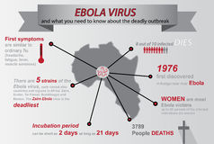 Ebola infographic Stock Images