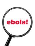 Ebola Stock Photography