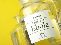 Ebola - Medical Research Royalty Free Stock Images