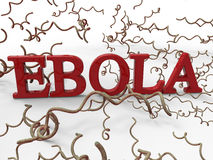 Ebola virus concept Royalty Free Stock Images