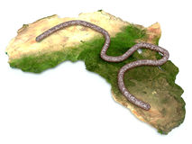 Ebola virus on the continent Africa.  Royalty Free Stock Images
