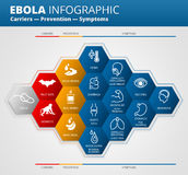 Ebola virus disease infographic Stock Images