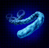 Ebola Virus. Disease medical concept as a three dimensional dangerous microbe causing symptoms as hemorrhagic fever as a human health symbol of the dangers of Stock Photo