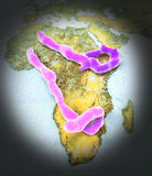 Ebola virus. Geographic map africa with Ebola virus Stock Images
