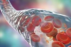 Ebola virus i blod Arkivfoton