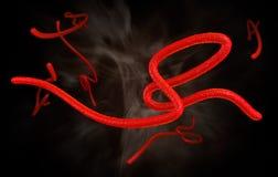 Ebola Virus Krankheit virions vergrößert durch ein Mikroskop Lizenzfreie Stockfotografie