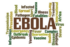 Ebola. Word Cloud on White Background Stock Photography