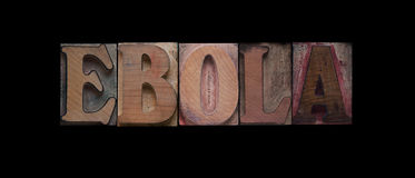 Ebola word in old wood type. The word 'ebola' in old wood type on a black background Royalty Free Stock Photos