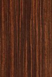 Ebony (wood texture) Stock Image