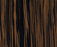Ebony wood texture Royalty Free Stock Photography