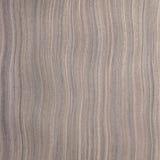 Ebony wood texture Stock Photos