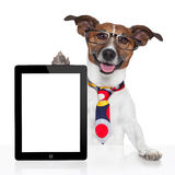 Ebook de la PC de la tablilla del perro del asunto Foto de archivo libre de regalías
