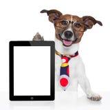 Ebook do PC da tabuleta do cão do negócio Foto de Stock Royalty Free