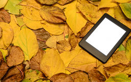 Ebook reader lying on autumn leaves background Royalty Free Stock Image