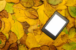 Ebook reader lying on autumn leaves background Stock Image