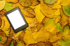 Ebook reader lying on autumn leaves background Stock Photos