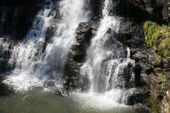 Ebor Falls, Australia Royalty Free Stock Photo