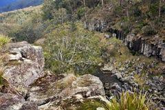 Ebor Falls, New South Wales, Australia. View of Ebor Falls, NSW, Australia Royalty Free Stock Photography