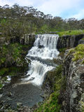 Ebor Waterfall, New England, NSW, Australia. Stock Photos