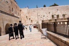 Ebrei Hasidic alla parete occidentale Fotografia Stock