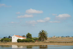 Ebro Delta landscape Stock Photo