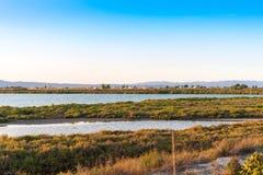Ebro Deltaestuarium en moerasland, Tarragona, Catalunya, Spanje Exemplaarruimte voor tekst Royalty-vrije Stock Afbeeldingen