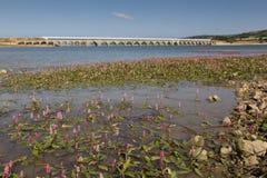Ebro reservoir, Burgos Royalty Free Stock Photos