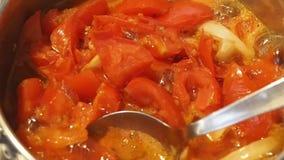 Ebulição da sopa do tomate vídeos de arquivo