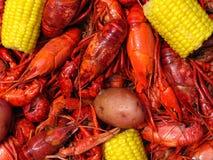 Ebullición de los cangrejos Imágenes de archivo libres de regalías