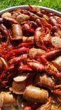 Ebullición de los cangrejos de Luisiana Fotos de archivo