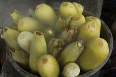 Ebullición del maíz Foto de archivo libre de regalías