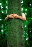Ecólogo do hugger da árvore fotografia de stock