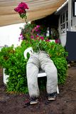 An eccentric flowerpot for gardening. Interesting original decorative flowerpot for gardening made of a trouser sitting on a chair stock photography