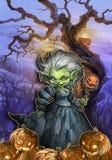 Eccentric halloween witch Stock Photo