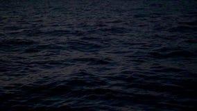 Eccitazione sulla superficie del mare alla notte video d archivio
