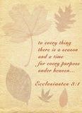 Ecclesiastes Stock Images