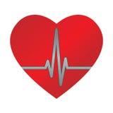 ecg καρδιά Στοκ Φωτογραφία