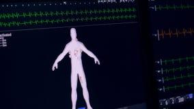 Ecg, datos del cardiograma sobre la exhibición libre illustration