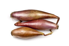 Echalion Onions Royalty Free Stock Image