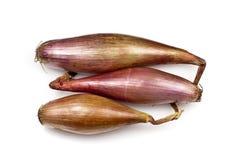 Free Echalion Onions Royalty Free Stock Image - 24348026