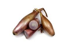 Echalion Onions Stock Images
