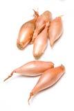 Echalion Onions Royalty Free Stock Photo