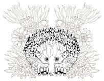 Echidna animal tirado mão Ilustração Stock