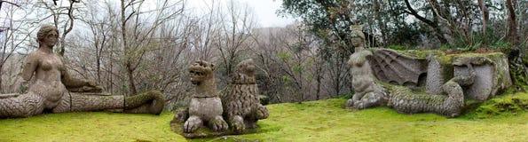 Echidna, les lions et la fureur Photo libre de droits