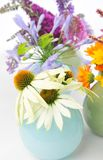Echinacea, Calendula and other herbal flowers Royalty Free Stock Photo