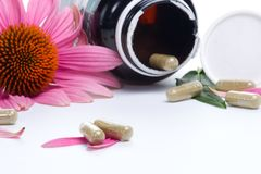 Echinacea capsules. Closeup of Echinacea extract pills and fresh Echinacea flowers best suited for alternative medicine ads Stock Images