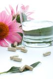 Echinacea capsules Stock Photography