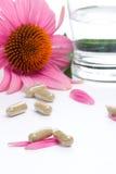 Echinacea capsules Stock Photos
