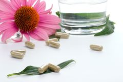 Echinacea capsules Royalty Free Stock Photography