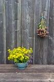 Echinacea purpurea pink coneflower flower bunch and St. Johns wort in vase Stock Photography